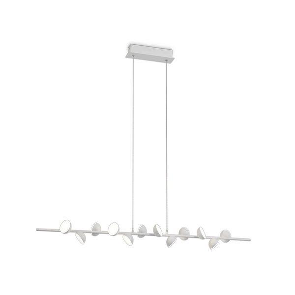 adn lampara